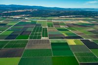 Farmland in Northern California