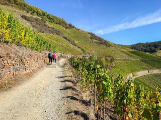 Wanderer auf dem Rotweinwanderweg im Ahrtal