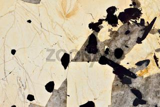 Real natural 'Quartzite Patagonia'  texture pattern.