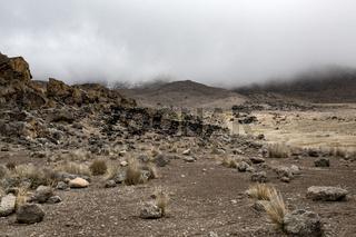 Hochland Kilimandscharo