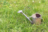 Great watering can in the grass