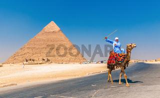 GIZA, EGYPT - September, 16, 2008: Camel rider and Pyramid of Khufu, Giza, Egypt