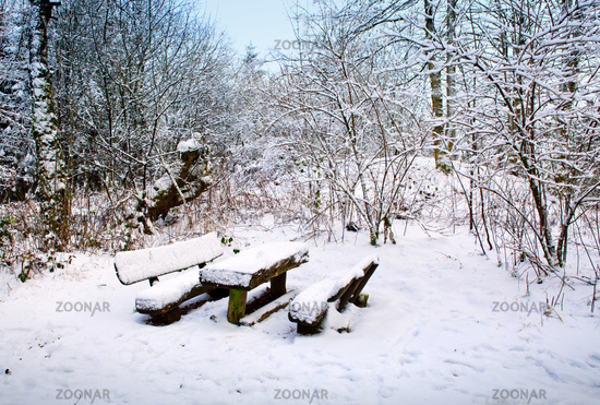 Park bench and trees covered by heavy snow.