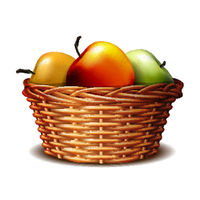 Red and green ripe apples in the basket.