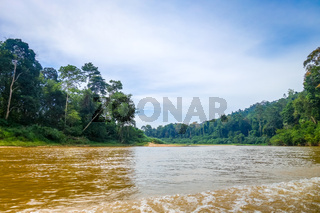 River and jungle in Taman Negara national park, Malaysia
