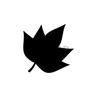 Autumn leaf. Isolated icon. Nature and fall vector illustration