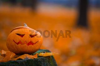 Halloween pumpkin on stump