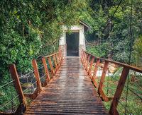 Footbridge at Penang national park, Malaysia