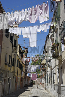 laundry dries on clotheslines