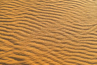 ripples in the sand, photo as background