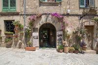 Flower decorated facade picturesque Valldemossa