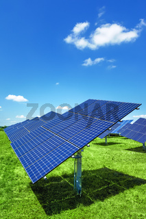 typical solar plant outdoors