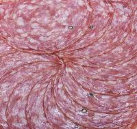 Salami slices on white background
