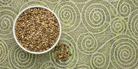 hemp seeds in a ceramic bowl
