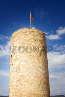 Fortress tower with flag