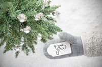 Gray Glove, Tree, Silver Ball, Text Thank You, Snowflakes