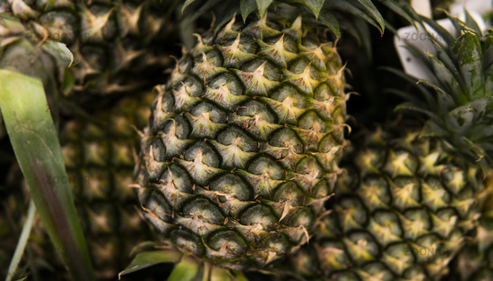 A lot of pineapple fruit on a market in asian country. Texture background from the pineapples. Tropical and exotic fruits. Healthy and vitamin food concept.