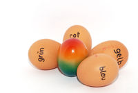 german labeled eggs for easter a colorful in the middle