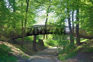 Holzbruecke im Jenisch Park in Hamburg