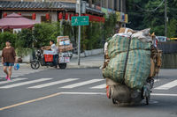 Carrying and pulling heavy load in Chengdu
