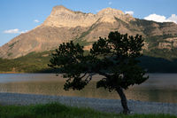 Waterton Lakes National Park, Alberta, Canada