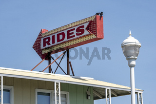 Two Birds Sit on a Lighted Arrow Sign Saying Rides