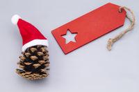 Tannenzapfen mit roter Mütze und Schild