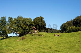 Bayrische Landschaft 024. Deutschland