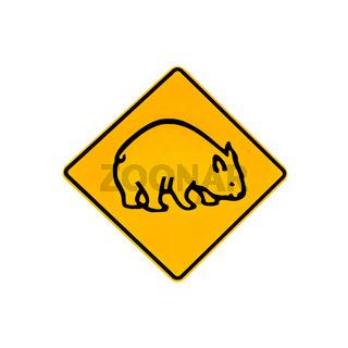 wombat warning sign