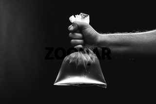 Male hand is holding a empty plastic bag filled with clean water. Environment and ecology concept.