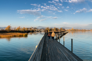 landscape view of marsh and lake shore with the town of Rapperswil in evening light and a long woode