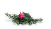 small crimson ball on Christmas tree branch isolated on white background.