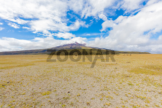 prairie plateau in the Cotopaxi national park with volcano in the background