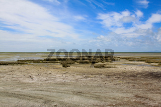 Bizarre Küste