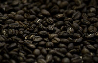 Soft image of roasted brown coffee beans.