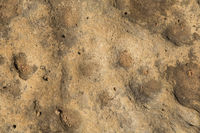 brown stone texture, close-up stone background texture