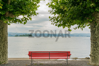 red park bench on a lake shore with a fantastic view and framed by London plane trees