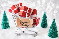 Shopping Cart, Christmas Gift, Snow, Entspannte Feiertage Means Merry Christmas