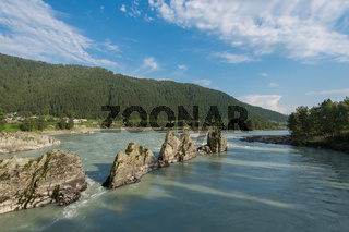 Fast mountain river Katun