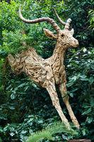Wooden Gazelle