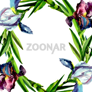 Blue and pink irises. Floral botanical flower. Frame border ornament square.