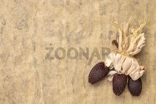 ornamental strawberry corn ears abstract