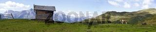 Panorama einer Alm mit Kuh und Hütte im Hochpustertal beim Thurntaler in Osttirol