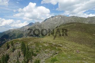 Wanderweg auf dem Narrenkogel, Ötztal, Osttirol