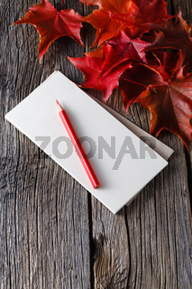 Open notebook and pen in fall background