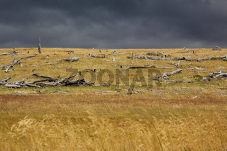Apokalypse Patagonien