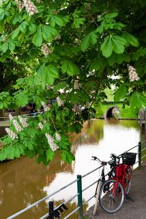 Harlesiel beautiful town in the North of Carolinensiel